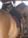 fancypants mounted sideways.png